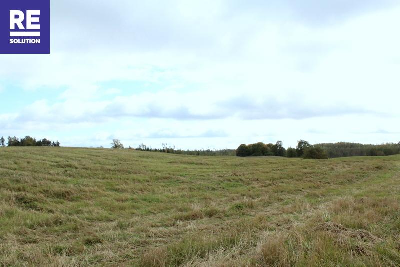 19,64 ha žemės ūkio paskirties sklypai Trakų raj. Onuškio sen. Alešiškių II, Miciūnų ir Parankavos k. nuotrauka nr. 9