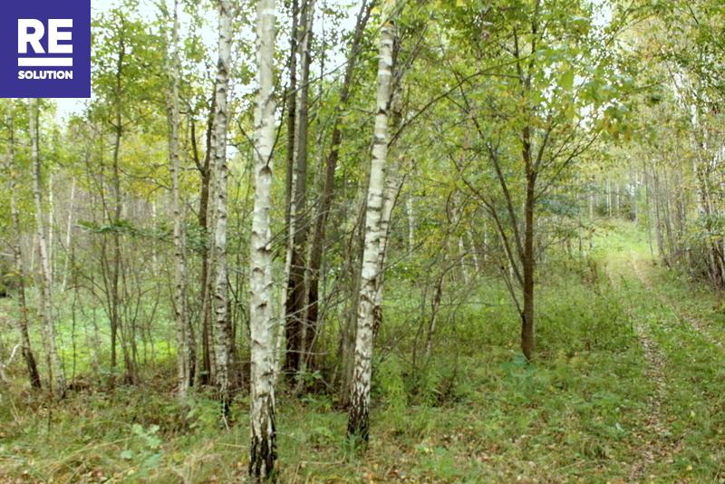 19,64 ha žemės ūkio paskirties sklypai Trakų raj. Onuškio sen. Alešiškių II, Miciūnų ir Parankavos k. nuotrauka nr. 15