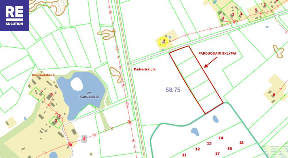 Parduodamas žemės ūkio paskirties sklypas Padvariškių k., 254 a ploto nuotrauka nr. 11