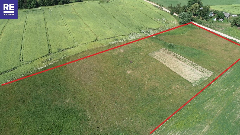 Parduodamas žemės ūkio paskirties sklypas Padvariškių k., 254 a ploto nuotrauka nr. 2
