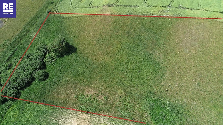 Parduodamas žemės ūkio paskirties sklypas Padvariškių k., 254 a ploto nuotrauka nr. 6