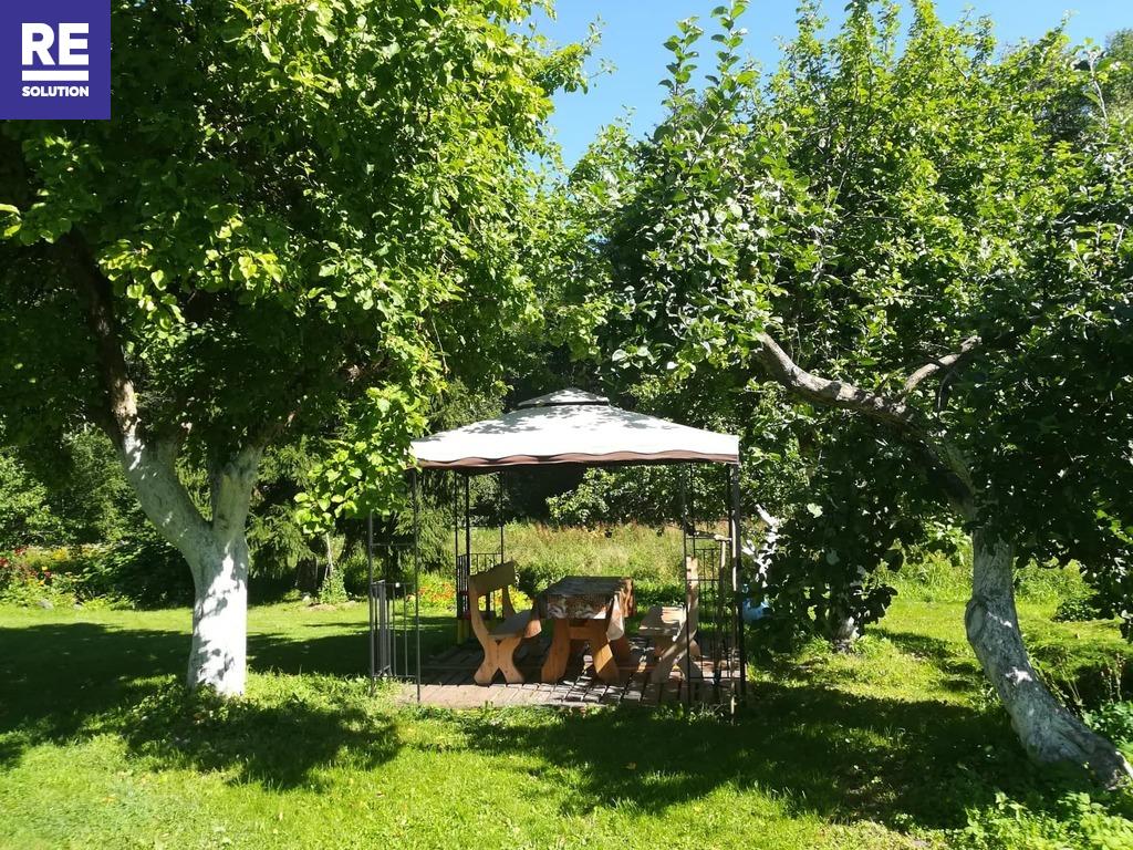 Parduodama įstabaus grožio sodyba Molėtų rajone nuotrauka nr. 14