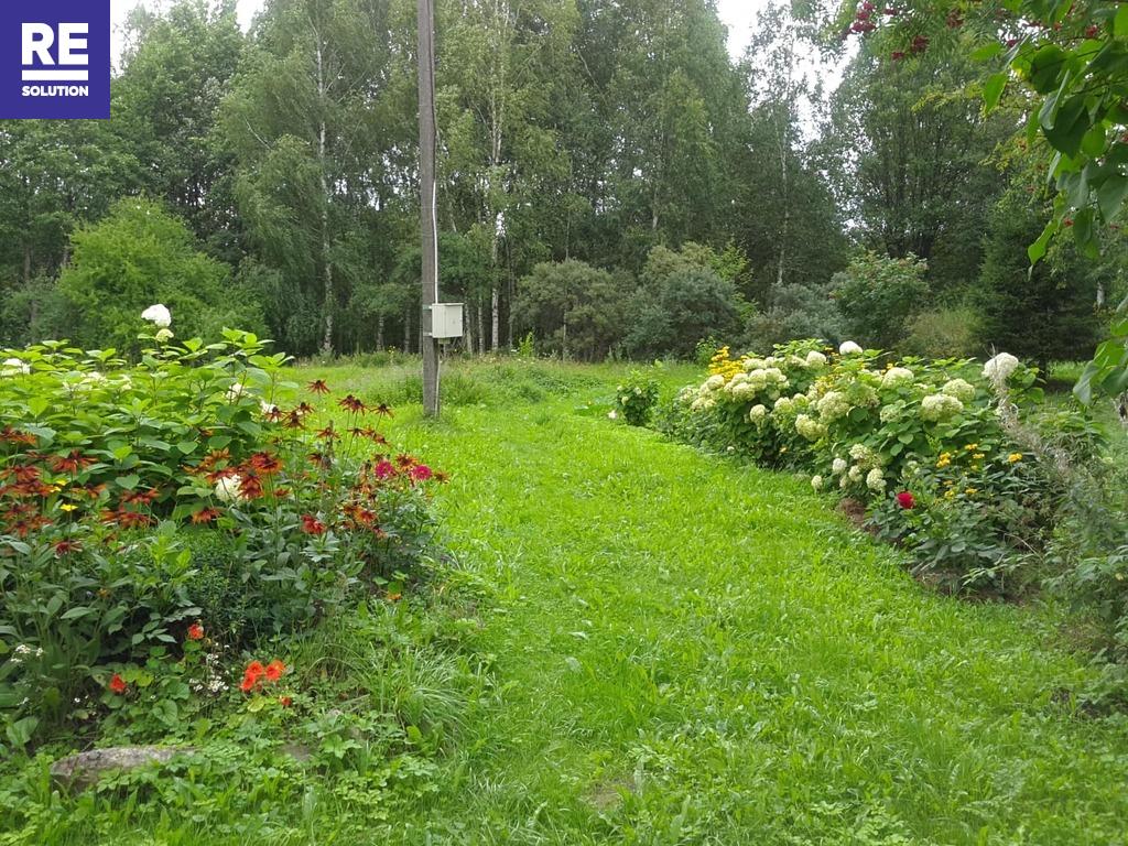 Parduodama įstabaus grožio sodyba Molėtų rajone nuotrauka nr. 8