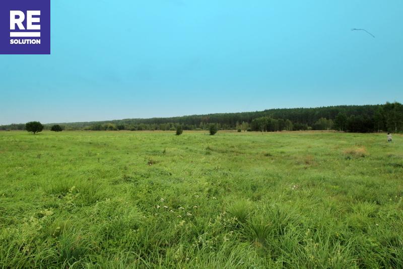 Parduodamas žemės ūko paskirties sklypas Merešlėnų kaime nuotrauka nr. 3