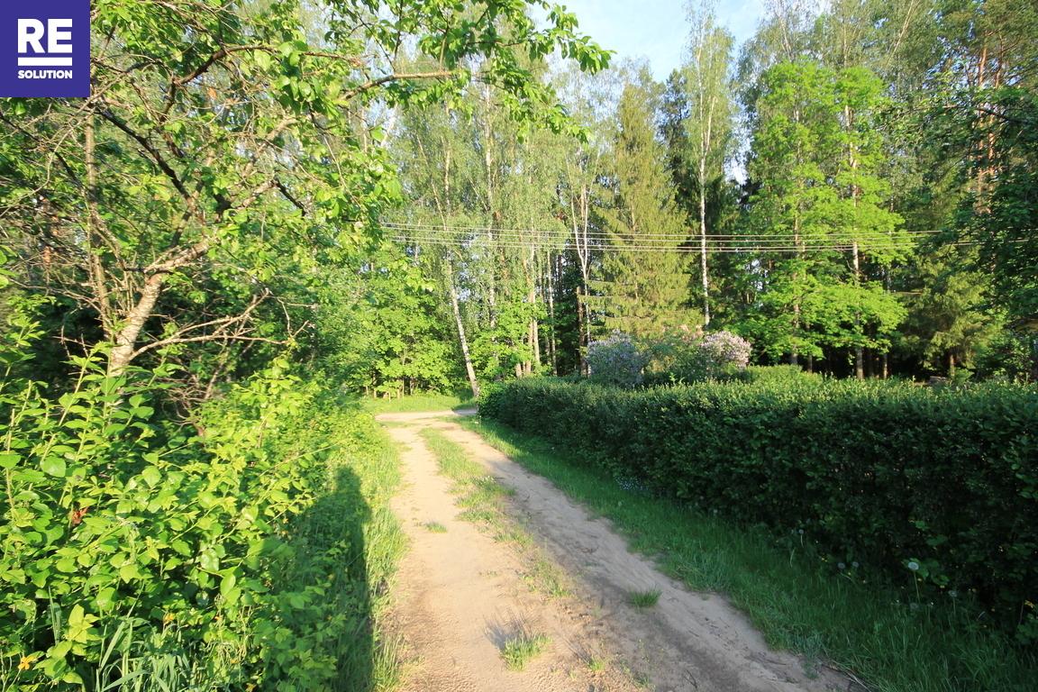 Parduodamas 6 arų sodo sklypas Daubėnų k., Rudaminos sen. nuotrauka nr. 7
